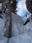 Rock Climbing Photo: The smaller tree with a fixed sling. Rap 100 feet ...