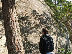 Rock Climbing Photo: Madrone Wall High Noon 5.10c
