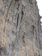 Rock Climbing Photo: Single Life