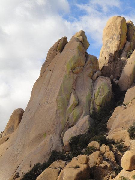 Rock Climbing Photo: Climbers on What's My Line