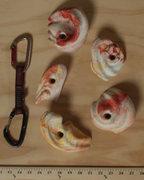 Rock Climbing Photo: Metolius Sessions mini jugs.