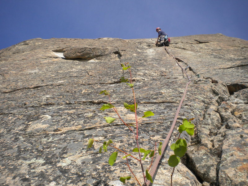 Rock Climbing Photo: Me on Bassomatic 5.9