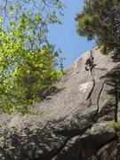 Rock Climbing Photo: Converse loving the final hand crack on Oscar the ...