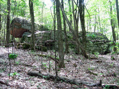 Rock Climbing Photo: One of many boulders to be established in the area...