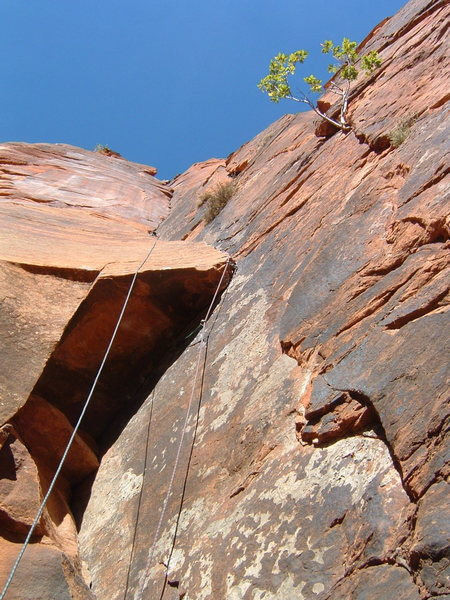 Fourth pitch of Monkeyfinger