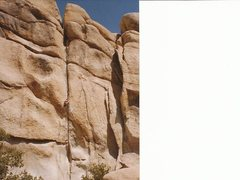 Rock Climbing Photo: Double Cross, Joshua Tree.
