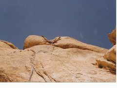 Rock Climbing Photo: Desert related dilirium.