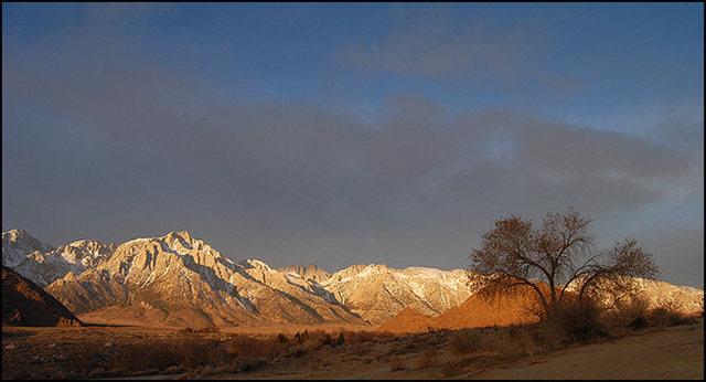 Lone Pine morning.Photo by Blitzo.