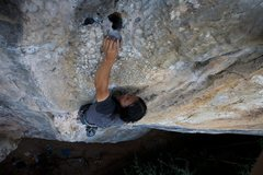 Rock Climbing Photo: Ram at the top.  By Anja Presson.