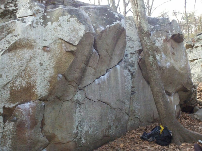 N Face of the Slice & Dice boulder. Farrah's Fawcet starts in the juggy horizontal crack in the dead center of the photo and traverses up and right, behind the tree to finish on jugs.