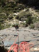 Rock Climbing Photo: Jascha following the P1 direct start