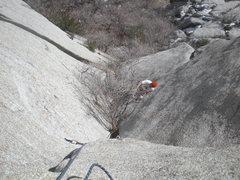 Rock Climbing Photo: Classic scrub oak thrutching.