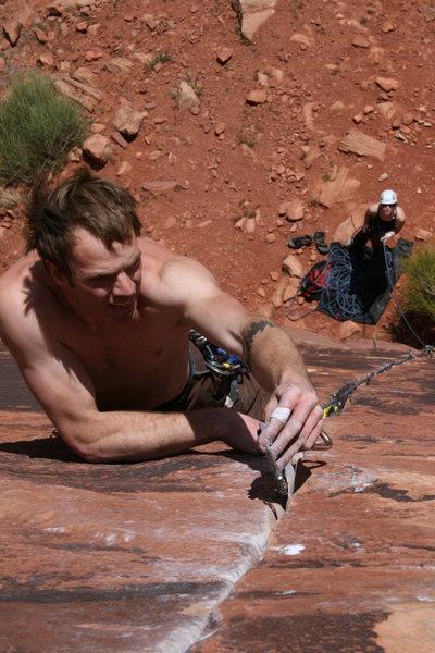 Rock Climbing Photo: Puma!