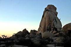 Rock Climbing Photo: sunset jtree