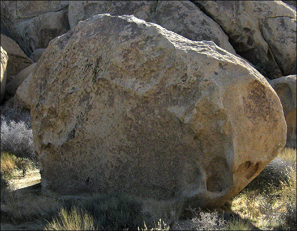 Equine Boulder.<br> Photo by Blitzo.
