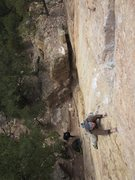 Rock Climbing Photo: White Muscle making his MP debut on No Rest for th...