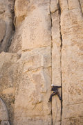 Rock Climbing Photo: photo by nate.  New Hampshire is the left crack, w...