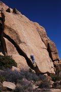 Rock Climbing Photo: Climber on R.M.L.
