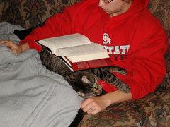 Rock Climbing Photo: The Cat book rest.