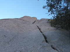 Rock Climbing Photo: Hex Marks the poot aka Lightning bolt Crack 5.7