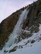 Rock Climbing Photo: The Bard Harrington
