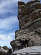 Rock Climbing Photo: Jax guarding My Own Private Idaho