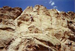 Rock Climbing Photo: Hartman Rocks, Gunnison Colorado