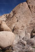 Rock Climbing Photo: Locknoob Monster