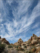 Rock Climbing Photo: Wonderland North. Photo by Blitzo.