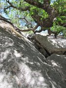Rock Climbing Photo: Looking up Swan Slab chimney, 5.5.