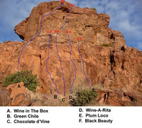 Rock Climbing Photo: Wine Wall Topo