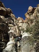 Rock Climbing Photo: starting up the gully