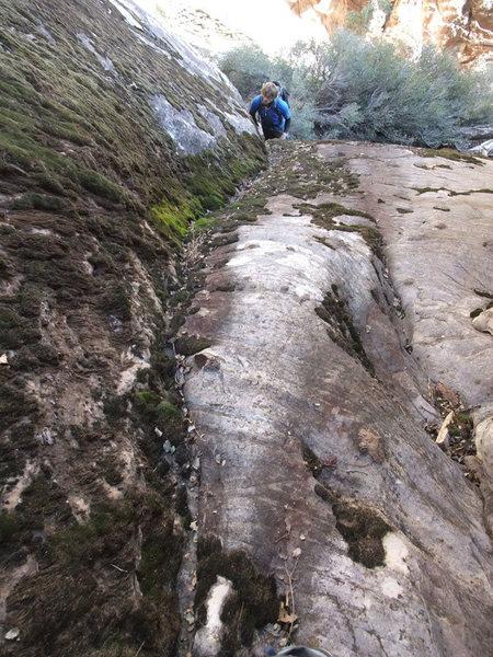 Rock Climbing Photo: Jon contemplating the mossy slab problem