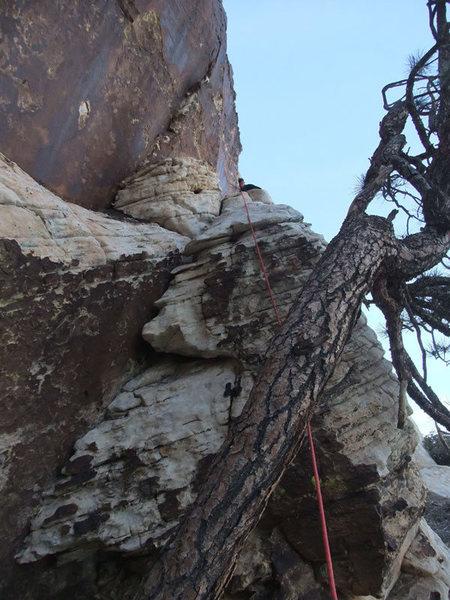 Rock Climbing Photo: start of P6