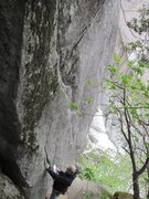 Rock Climbing Photo: Drastical (5.8) and Knob Job (5.9) on the Palm Bea...