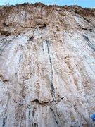 Rock Climbing Photo: Three bolts up on Dead Sea the climb moves right u...