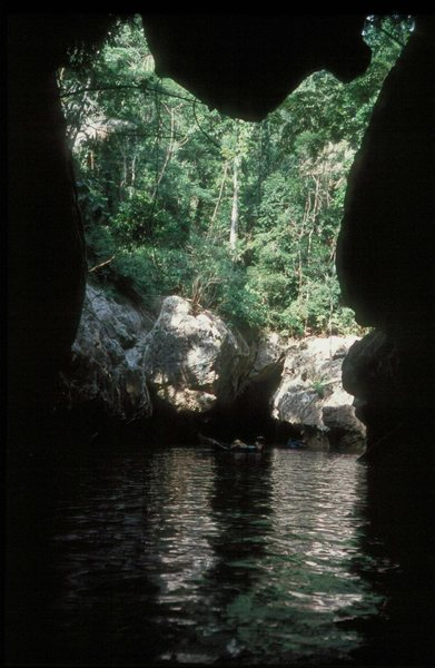 The Caves Branch river in the jungles of Belize.  Plenty of caving and climbing here . . .