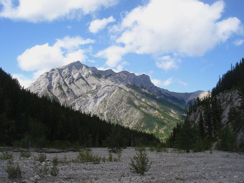 Rock Climbing Photo: Wasootch Creek, Kananaskis Country, Alberta.