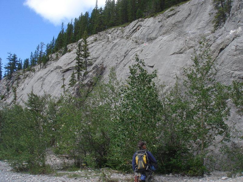 Rock Climbing Photo: Wasootch Creek, Kananaskis Country, Alberta.  Grea...