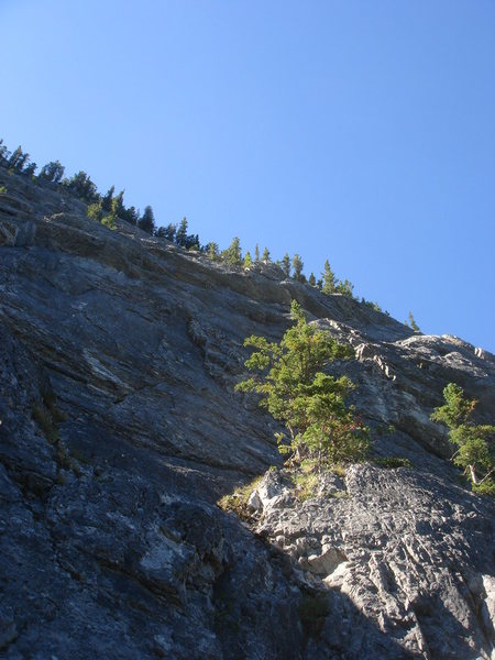 Rock Climbing Photo: Looking up Morningside (4 pitches, 460' 5.7).  Bow...