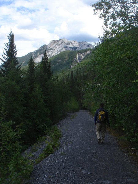 On the hike back.  Bow Valley, Alberta.