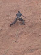 Rock Climbing Photo: Logan up high on Fit to be Tied.  Photo by Lee Rit...