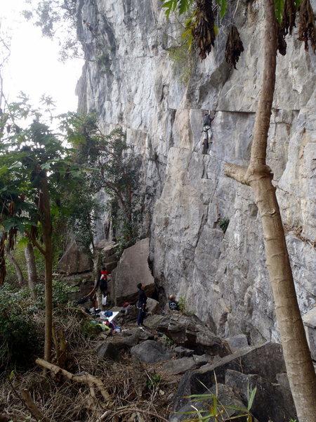 The Upper Mantel - Butterfly Valley - Vietnam