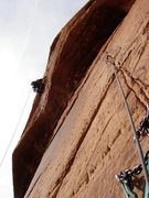 Rock Climbing Photo: High on P2