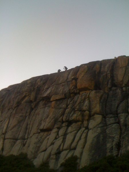 Rock Climbing Photo: Murphy Creek Right Side.
