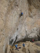 Rock Climbing Photo: Resting just above the redpoint crux. Photo by Bon...