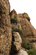 Rock Climbing Photo: Me leading Oolong - my first time on this route. I...