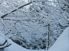Rock Climbing Photo: Winter Wonderland