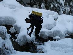 Rock Climbing Photo: Charlie crosses the log bridge