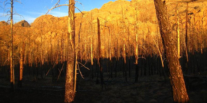 Fading light on Thunder Ridge.
